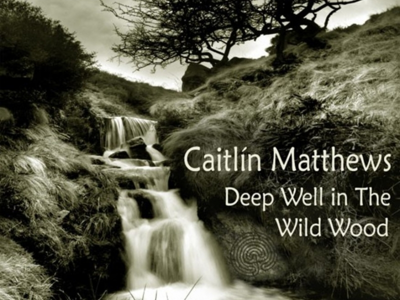 Deep Well in the Wild Wood: Songs From the Place Beyond written and sung by Caitlín Matthews accompanied & arranged by instrumentations by R.J.Stewart