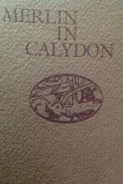 Merlin in Calydon by John Matthews